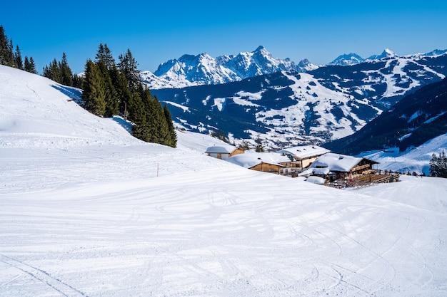 Vista mozzafiato delle montagne boscose coperte di neve durante il giorno Foto Gratuite