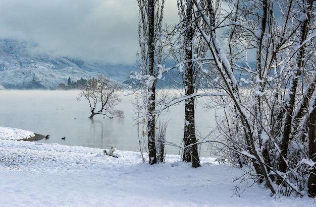 Vista mozzafiato del lago wanaka nel villaggio di wanaka, nuova zelanda Foto Gratuite