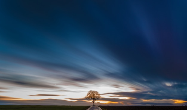 Breathtaking view of a tree in the middle of a grassy field with the beautiful colorful sky Free Photo
