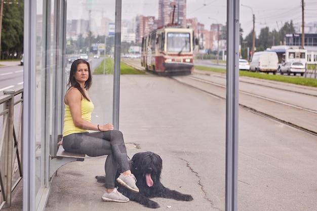 Briard와 여성 소유주는 낮에 대중 교통 정류장에 앉아 트램을 기다리고 있습니다. 프리미엄 사진