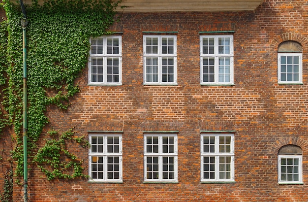 Brick building wall with six windows in copenhagen Premium Photo