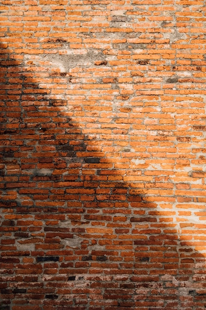 Brick wall background in light and shadow Free Photo