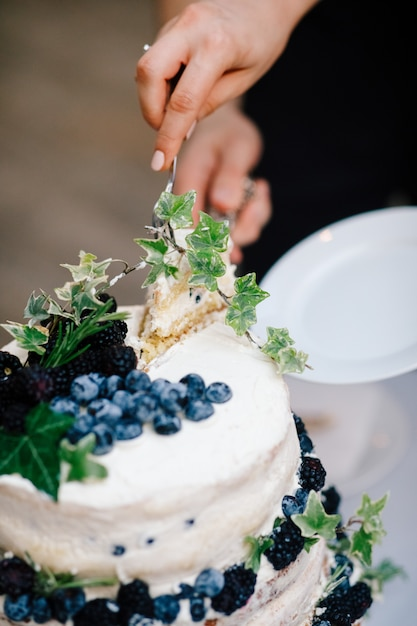Bride and groom cut wedding cake with blueberries Free Photo