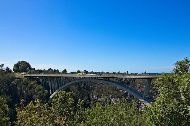 ガーデンルート国立公園の澄んだ空の下、緑に囲まれた橋 無料写真