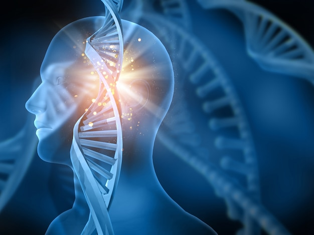 Bright dna with a human figure Free Photo