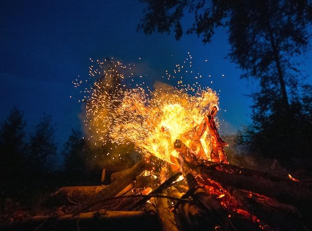 Bright fire on a dark night in a forest glade. Premium Photo