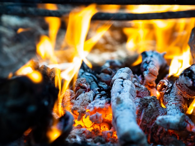 Bright fire flames and smoldering coals in bonfire Free Photo
