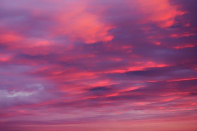 Bright pink sky background at sunset Premium Photo