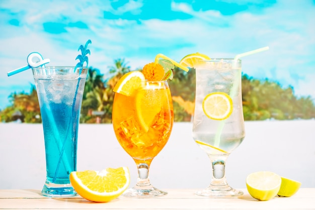 Bright tasty drinks in decorated glasses and sliced citruses Free Photo