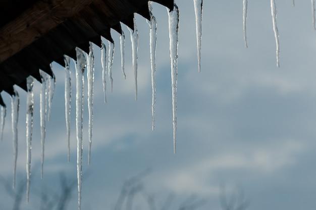 Bright transparent icicles against blue sky Premium Photo