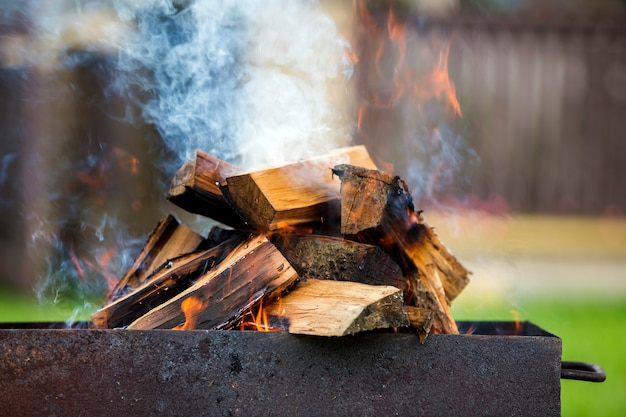 Brightly burning in metal box firewood for barbecue outdoor Premium Photo