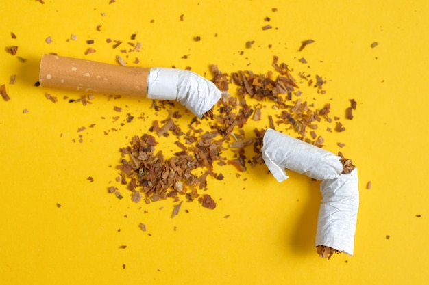 Broken cigarette in half with a row of scattered tobacco on yellow Premium Photo