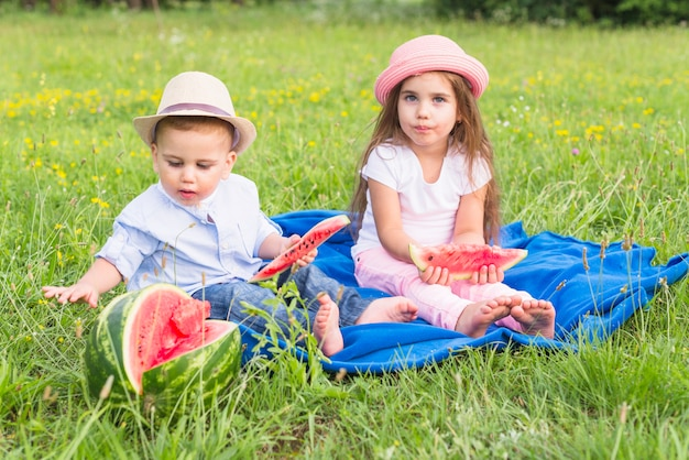 Brother and sister enjoying the watermelon in the park Free Photo