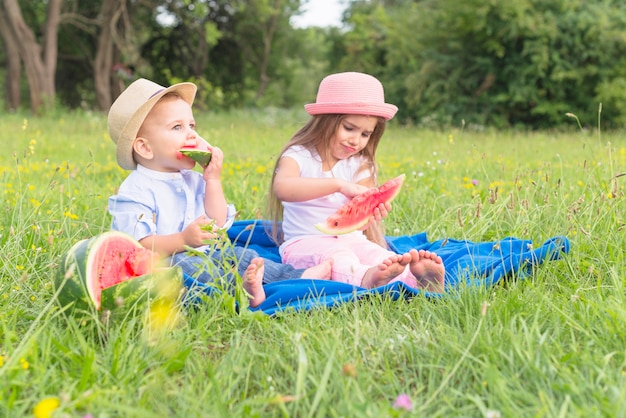 Brother and sister sitting on blue blanket over green grass eating watermelon Free Photo