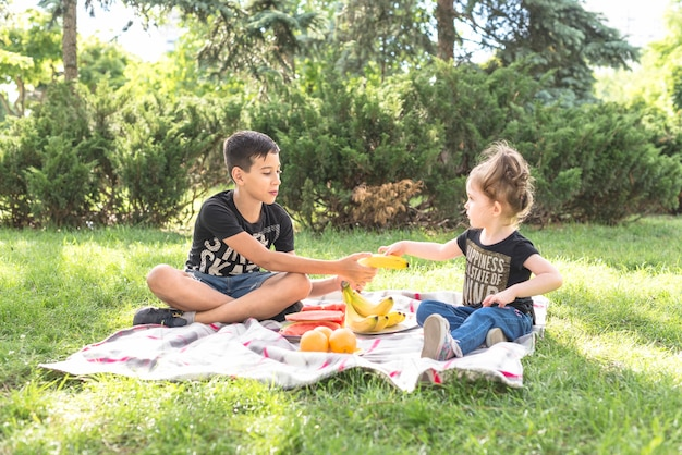 Brother and sister sitting in the park with many fruits Free Photo