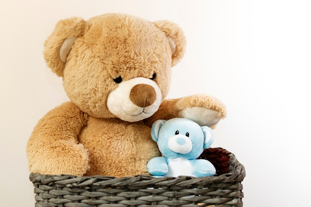 Brown and blue teddy bears in a basket. Premium Photo