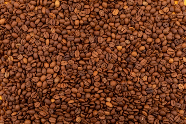 Brown coffee beans pattern surface Free Photo