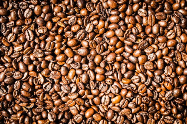 Brown coffee beans and seed Free Photo