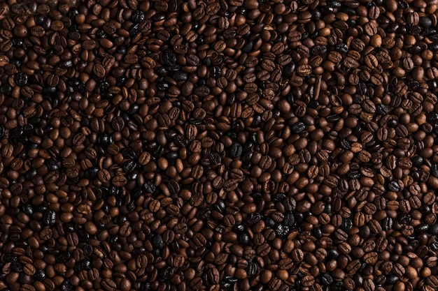 Brown coffee beans Free Photo