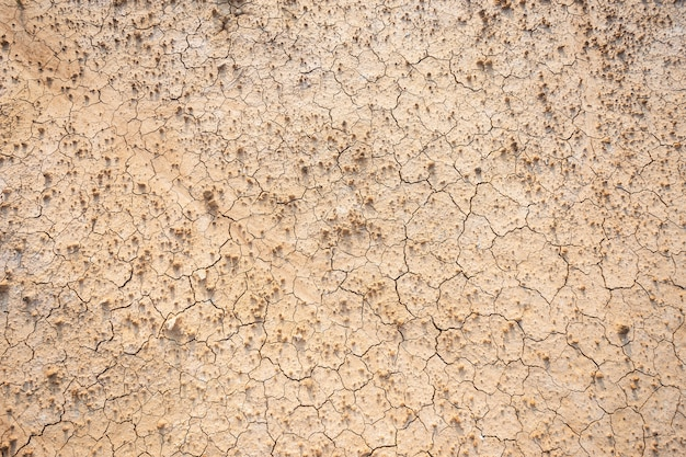 Brown dry soil or cracked ground texture background. Premium Photo