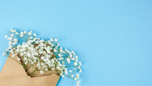 Brown envelop with small white gypsophila flowers arranged on corner of blue backdrop Free Photo