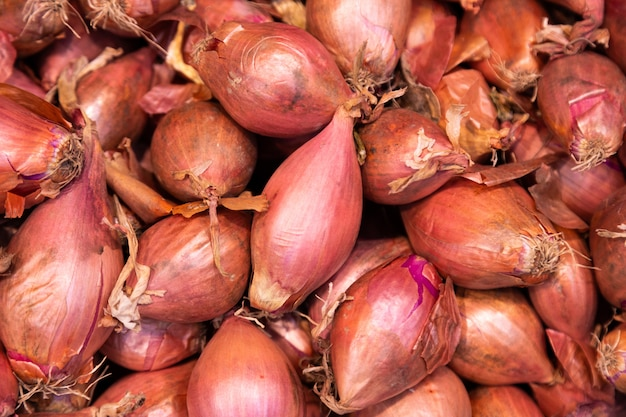 Brown harvested onions Premium Photo