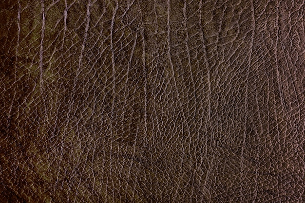 Brown leather background Free Photo