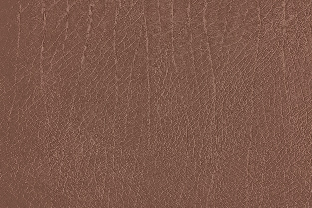 Brown leather grain texture Free Photo