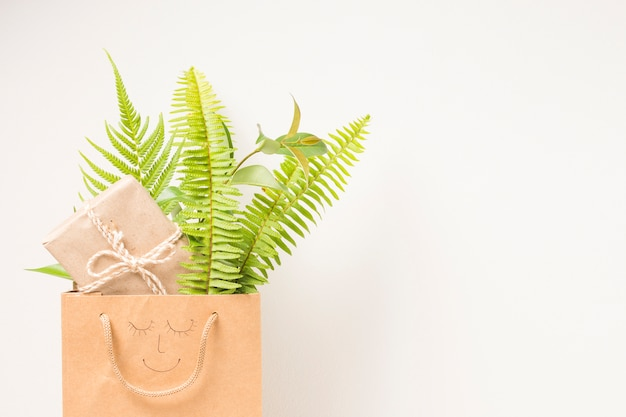 Brown paper bag with fern leaves and gift box against white backdrop Free Photo