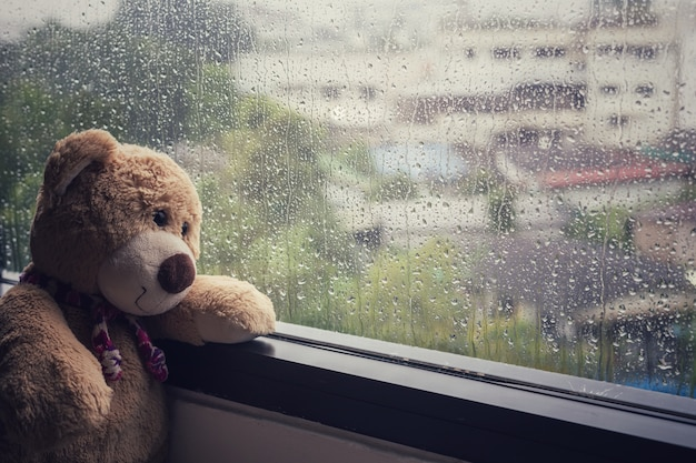 Brown teddy bear sitting beside the window while raining Premium Photo