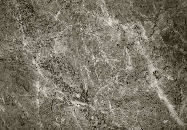 Brown and white marble textured Free Photo