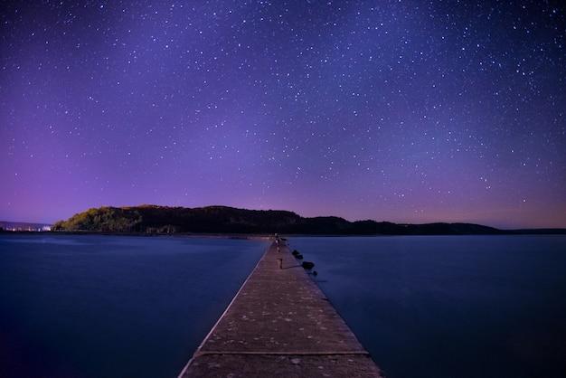 밤 하늘 아래 갈색 나무 독 무료 사진