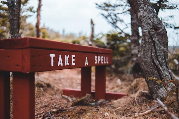 Коричневые деревянные вывески на коричневых высушенных листьях Бесплатные Фотографии