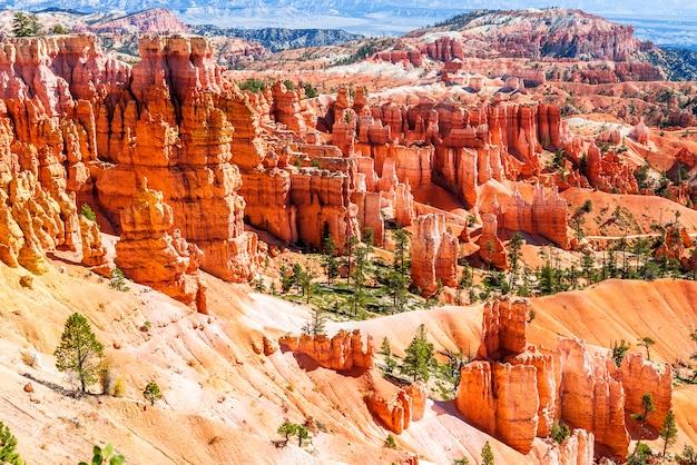 Bryce canyon Premium Photo