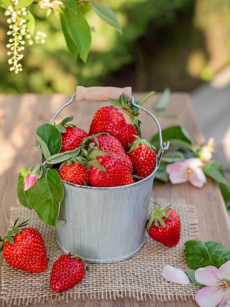 Bucket with strawberries on the nature Premium Photo