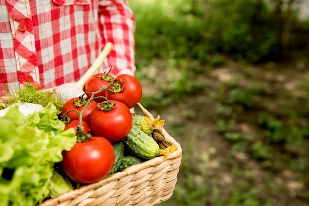 Ведро с помидорами и огурцами Premium Фотографии