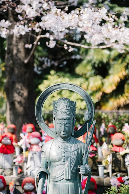 Buddha and sakura in temple of japan Free Photo