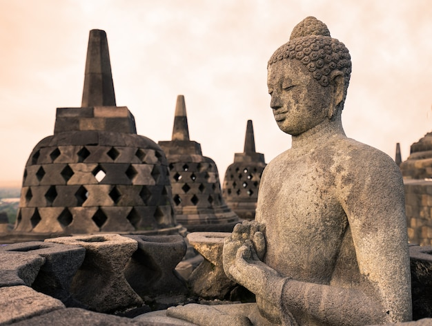 Buddha statue in borobudur, buddist temple in yogyakarta, indonesia Premium Photo