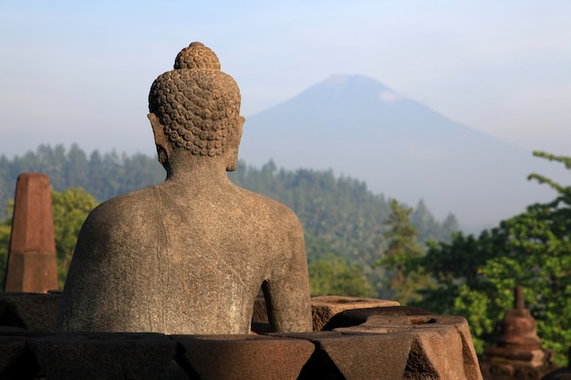 Buddha statue at borobudur temple Premium Photo