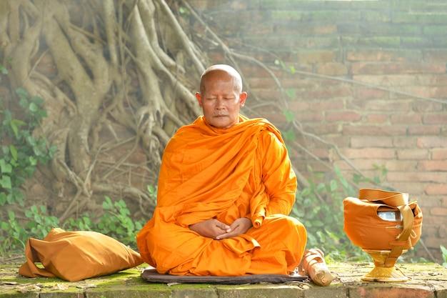 Буддийские монахи, монахи таиланда, монахи будды, таиланд Premium Фотографии