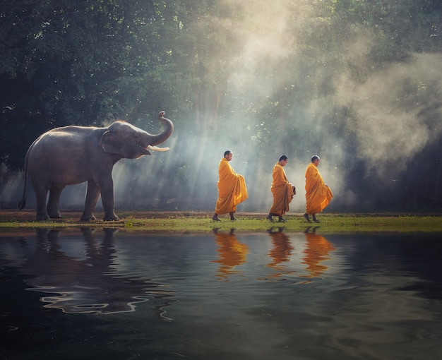 Buddhist monks walk collecting alms is traditional of religion buddhism on faith thai peop Premium Photo