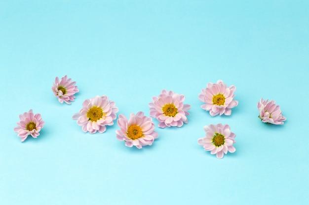 色付きの最小限の背景にピンクの花びらを持つピンクの花のつぼみ。花の背景のコンセプト Premium写真