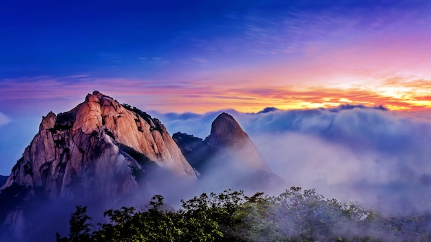 Bukhansan mountains is covered by morning fog and sunrise in bukhansan national park, seoul in south korea Free Photo