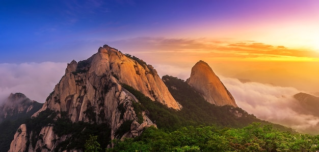 Bukhansan mountains is covered by morning fog and sunrise in seoul,korea.(dark tone) Free Photo