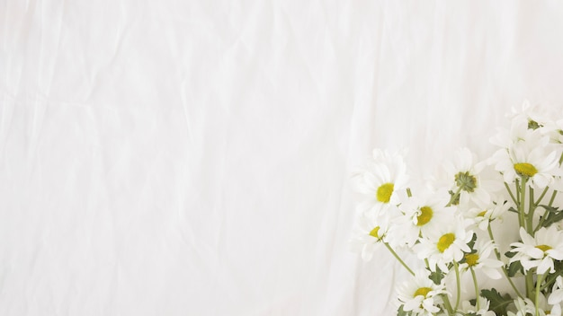 Bunch of beautiful flowers on green stems Free Photo