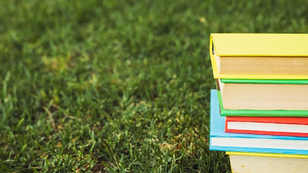 Bunch of books with colorful covers on green lawn Free Photo