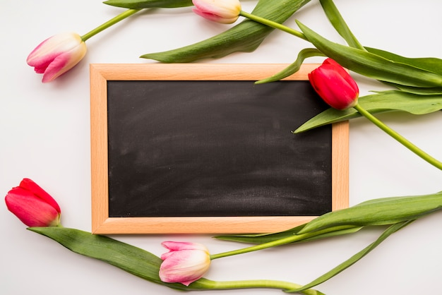 Bunch of colorful flowers on and chalkboard Free Photo