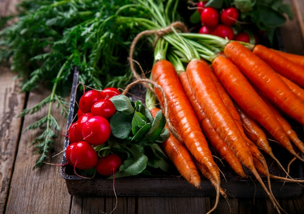 Bunch of fresh carrots with green leaves and a bunch of radishes Premium Photo