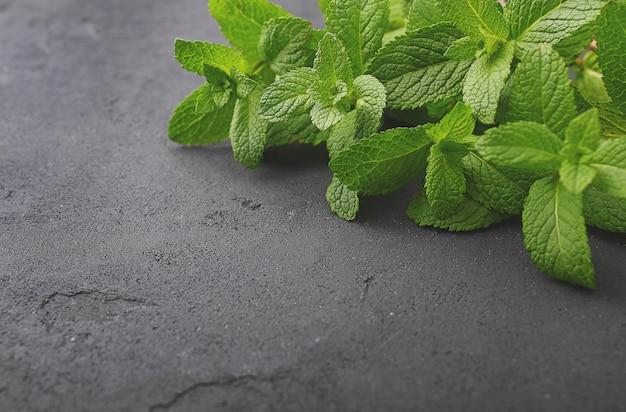 Bunch of fresh green mint on a black background Premium Photo