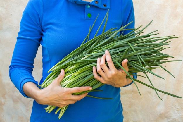 Bunch of fresh green onions Premium Photo